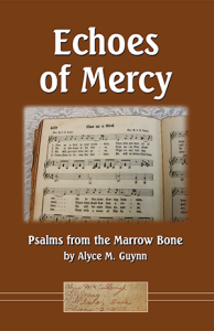 Echoes of Mercy by Alyce M. Guynn book cover